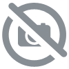 PUFF PASTRY WITH SALMON FILLING & SOREL SAUCE